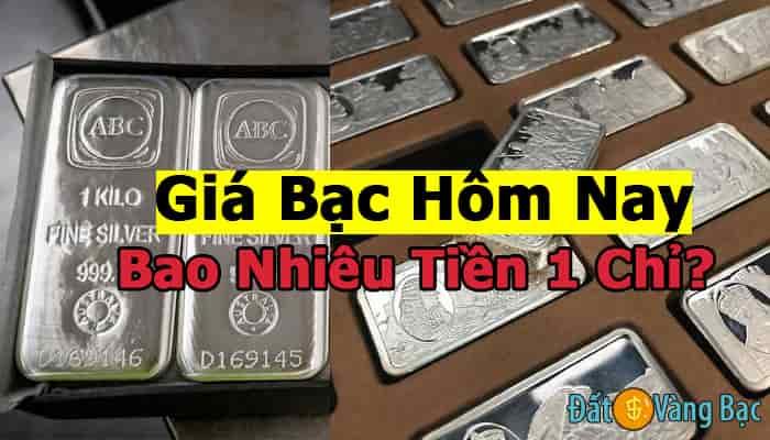 Giá Bạc Hôm Nay Bao Nhiêu Tiền 1 Chỉ? Có Bao Nhiêu Loại Bạc, Có Nên mua Tích Trữ Không?